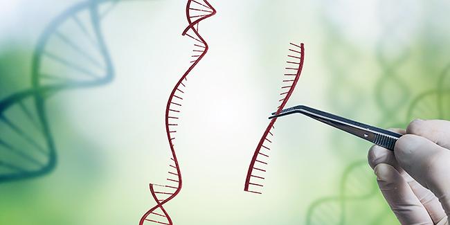 Cómo elegir el equipo adecuado para las aplicaciones de las ciencias biológicas
